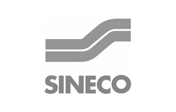 008 sineco